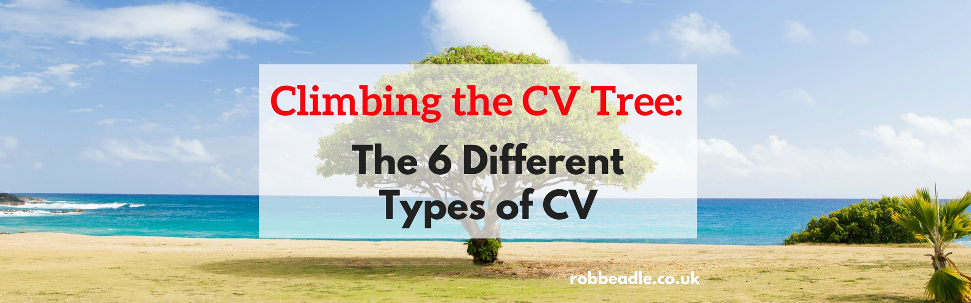 Tree - climbing the cv tree - the 6 different types of cv