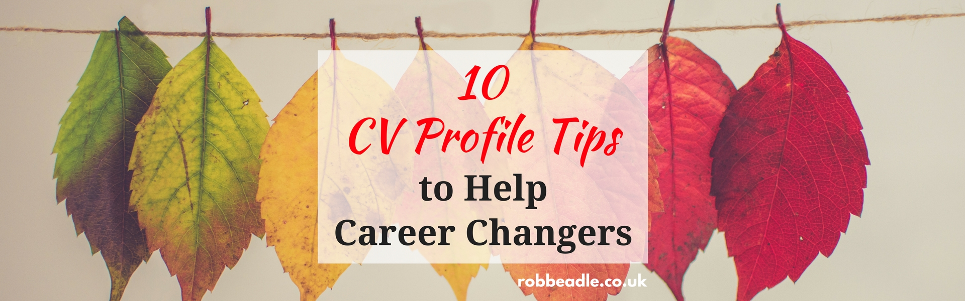Leaves changing colour - cv profile tips to help career changers