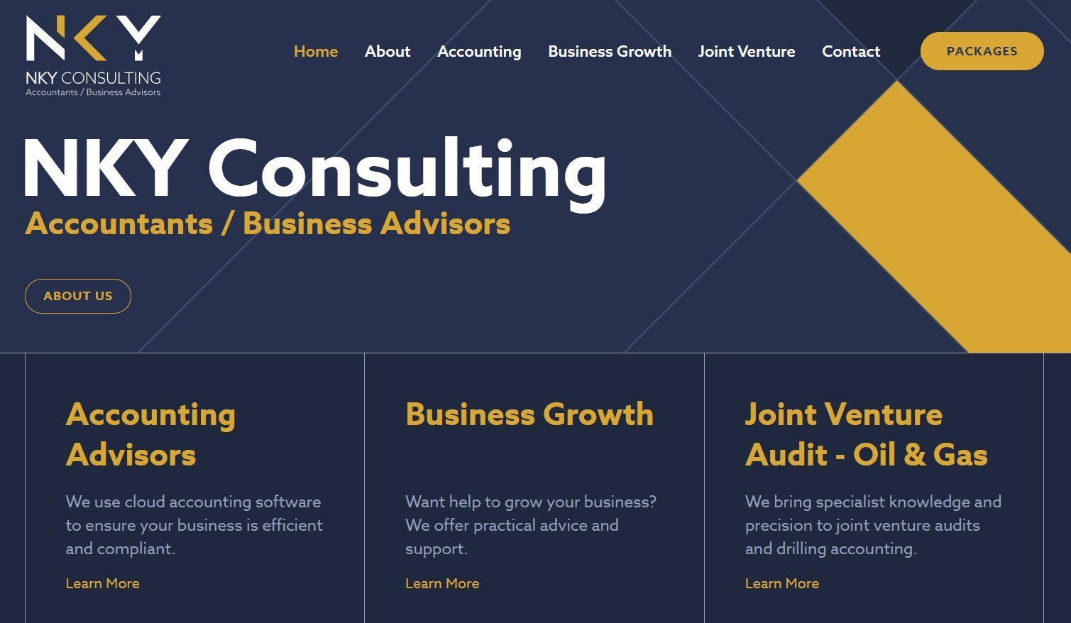screenshot of website copy on nky consulting home page
